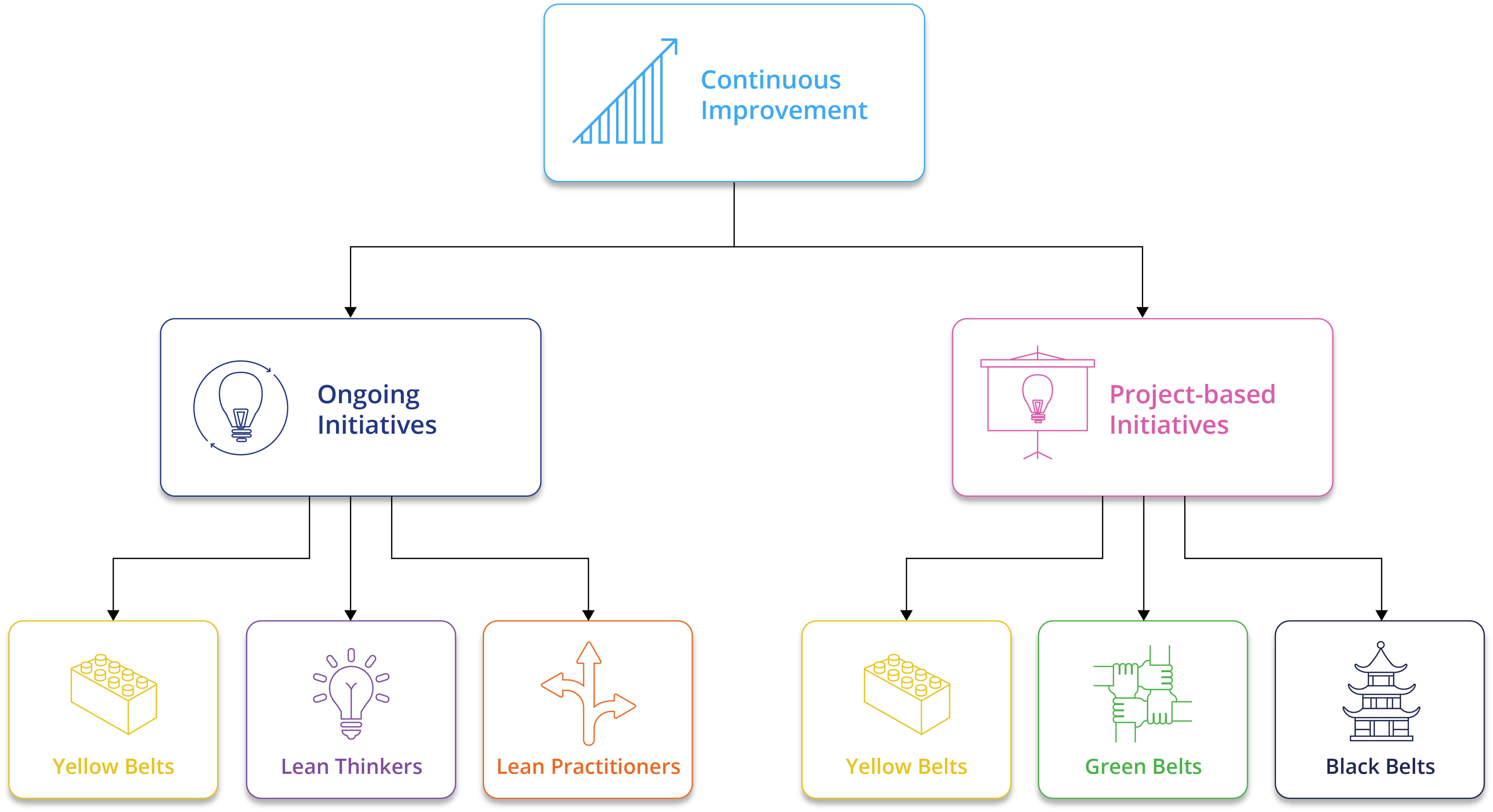 role dans une organisation six sigma